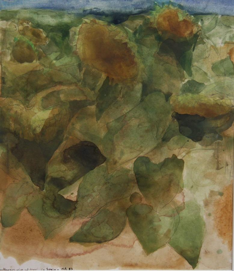 Norman Adams, watercolour, 'Sunflowers 1983'.